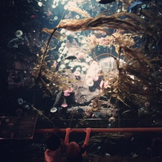 Aquarium in VCR aiport